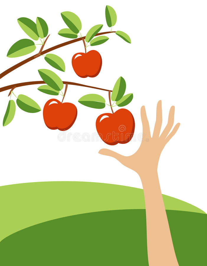 Tempting red apple vector illustration