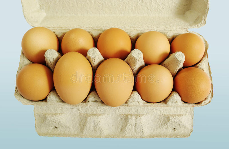 Download Ten brown eggs. stock photo. Image of organic, grey, blue - 17487858