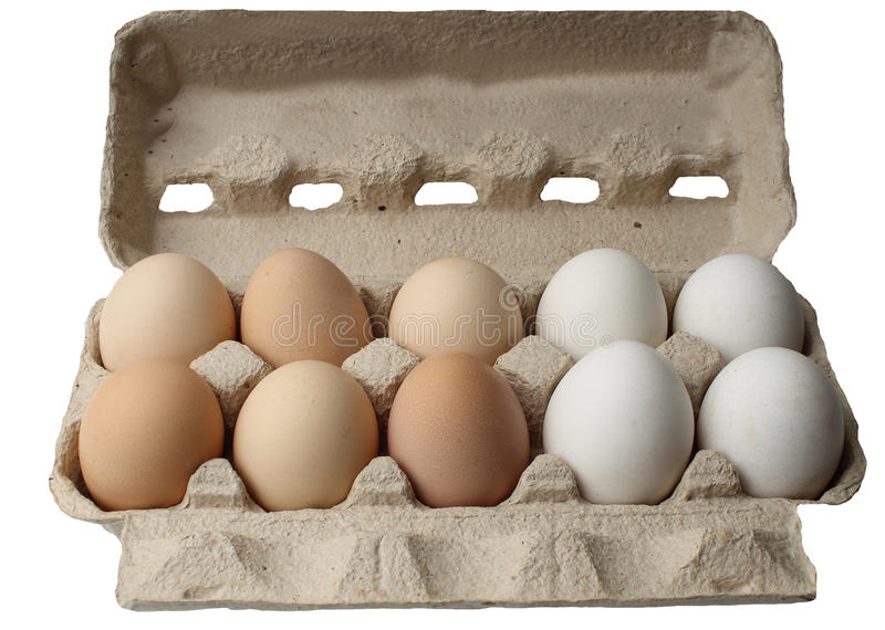 Ten eggs isolated on white stock photography