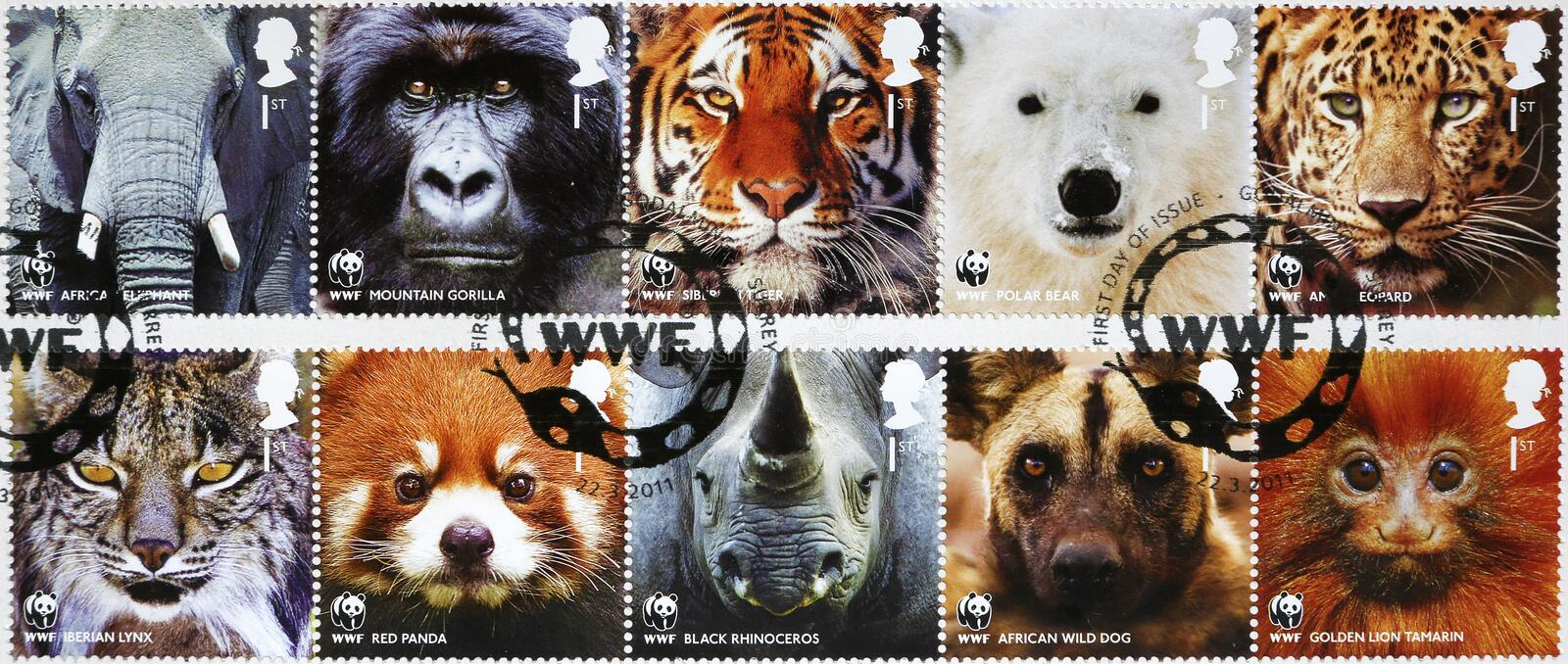 Ten stamps of WWF with endangered animals looking at you stock photos