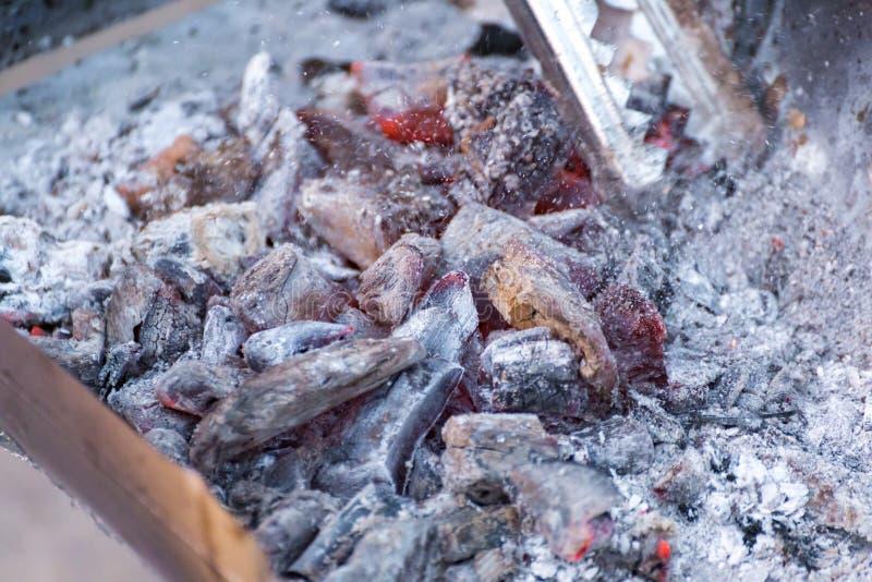 Tenazes de brasa da posse da mão e fogo do carvão vegetal da doninha foto de stock