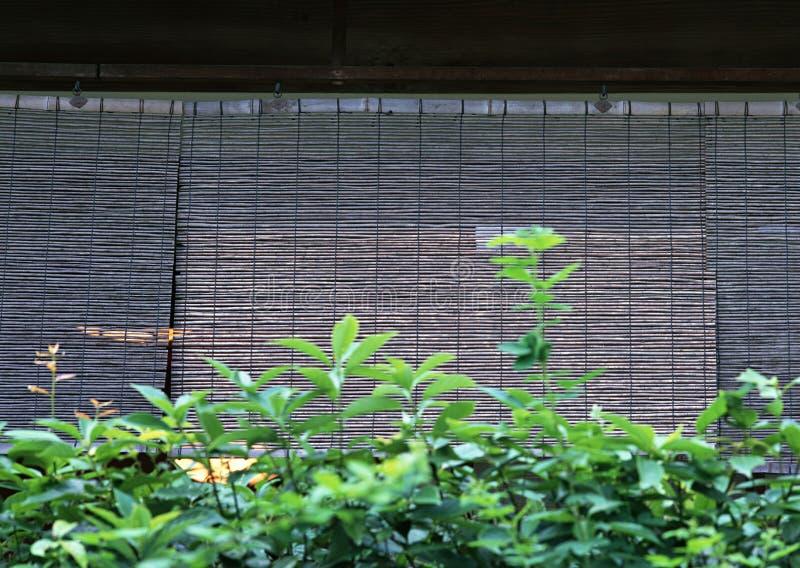 Tenda di legno di bambù giapponese per il fondo delle finestre fotografie stock