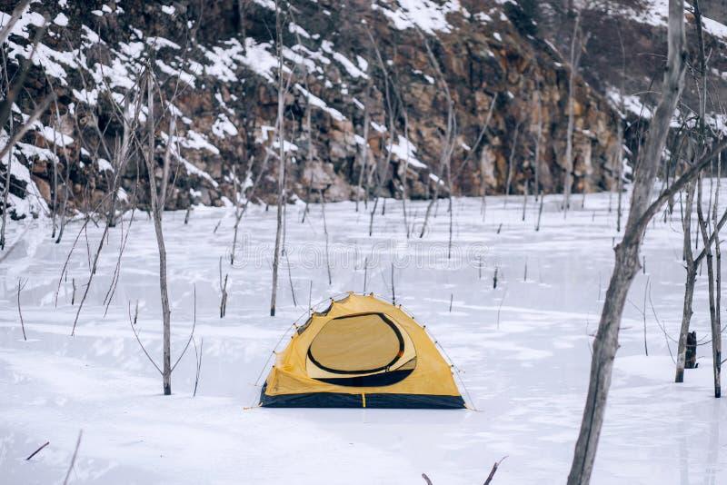 Tenda turistica fra neve ed alberi contro lo sfondo delle rocce fotografia stock libera da diritti