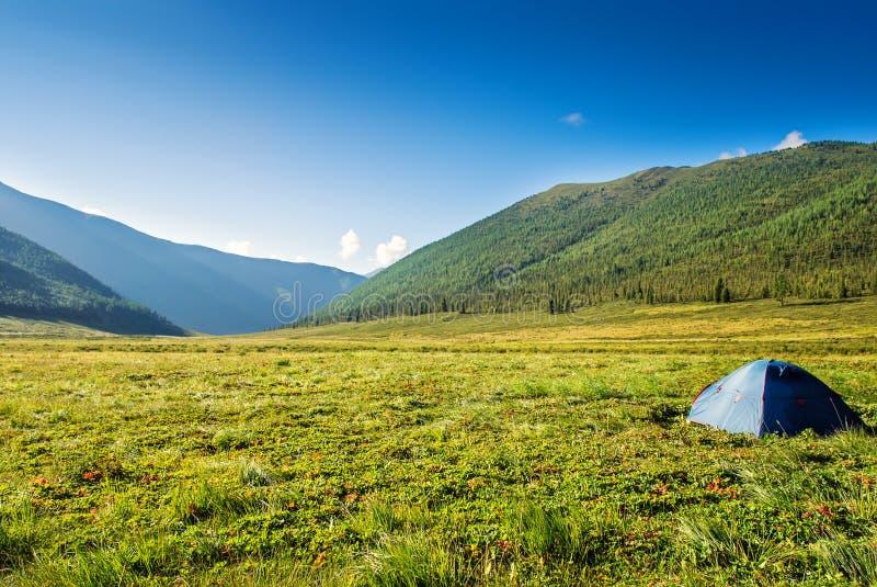 Tenda turistica su alba di alba del campo del prato della montagna fotografia stock libera da diritti