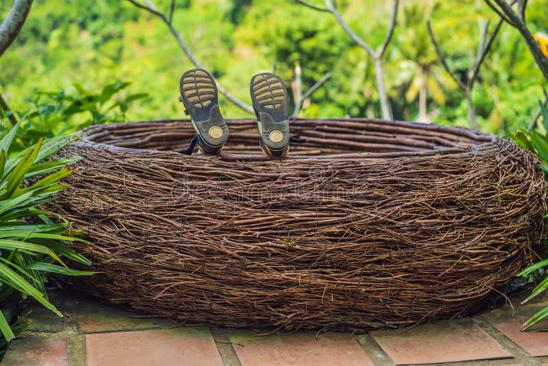 Tendenza di Bali, nidi della paglia dappertutto Posto adatto ai bambini Turista del ragazzo che gode del suo viaggio intorno all' fotografia stock