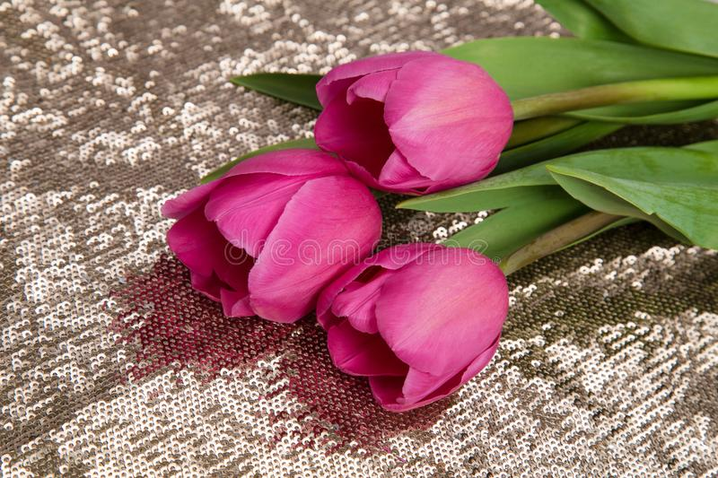 A tender bouquet of spring pink tulips on a gold background royalty free stock images