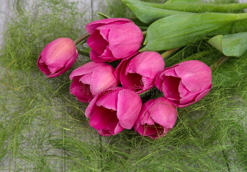 Tender bouquet of spring pink tulips stock photo