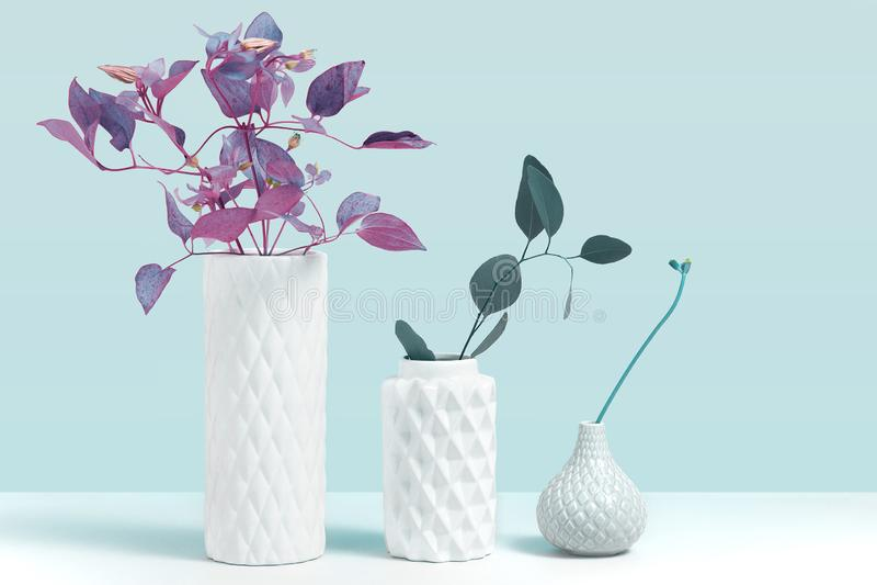 Tender la planta ultravioleta del color en florero Imagen de la maqueta con las plantas ornamentales en la situación de cerámic foto de archivo