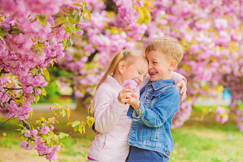Tender love feelings. Little girl enjoy spring flowers. Giving all flowers to her. Surprising her. Kids enjoying pink stock photos