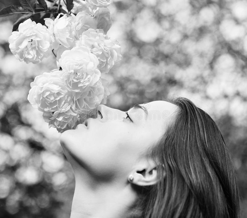 Tender scent and natural beauty. Girl looks at flowers on nature background, defocused. Woman with romantic face sniffs white or ivory roses. Nature and royalty free stock images