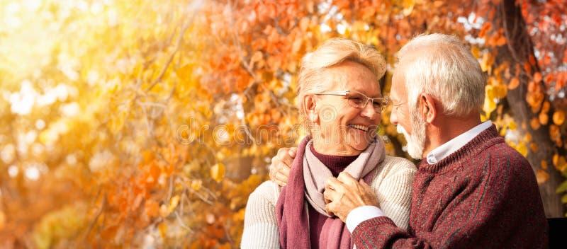Tender senior couple embracing on bench stock image