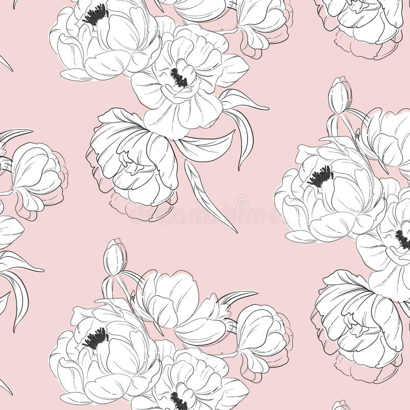 Tender white black peony floral decoration. Vector illustration with botanical print on pink background. Plant leaves. Tender white black peony floral decoration stock illustration