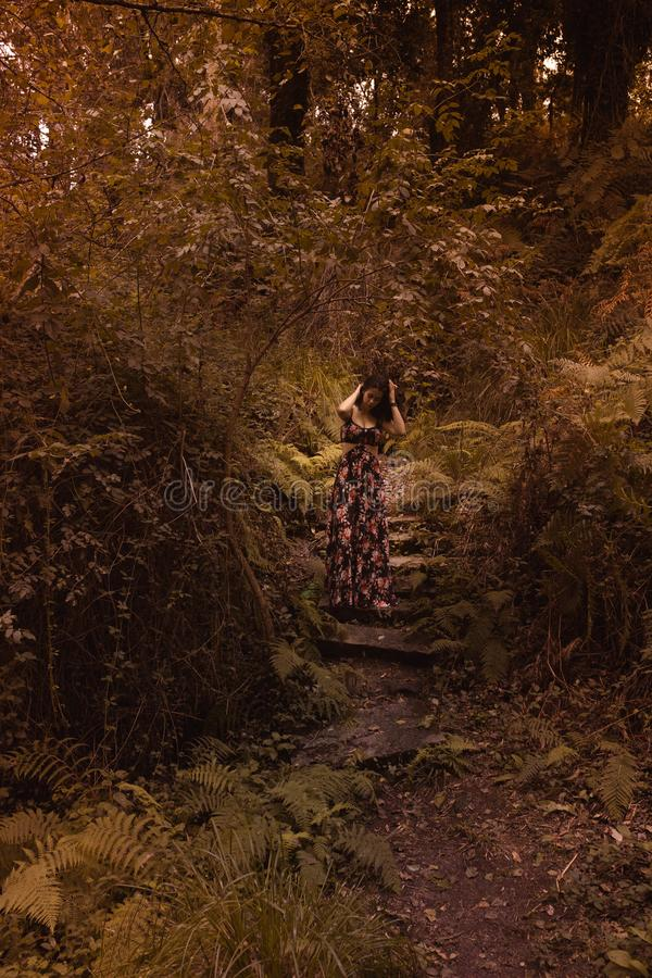 Tender woman in a black vintage dress touching her hair against the background of fiery autumn nature. Artistic Photography. Woman stock images