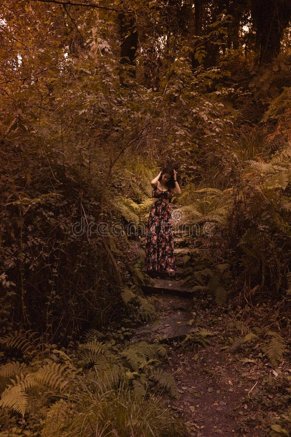 Tender woman in a black vintage dress touching her hair against the background of fiery autumn nature. Artistic Photography. Woman royalty free stock photo