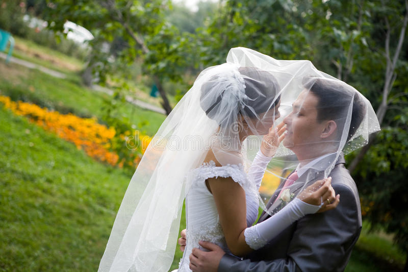 Download Tenderness stock image. Image of groom, photography, couple - 10618933