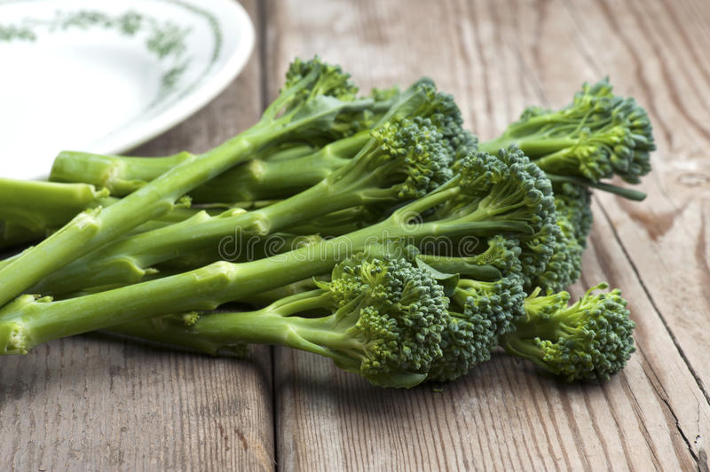 Tenderstem Brokkoli stockfoto