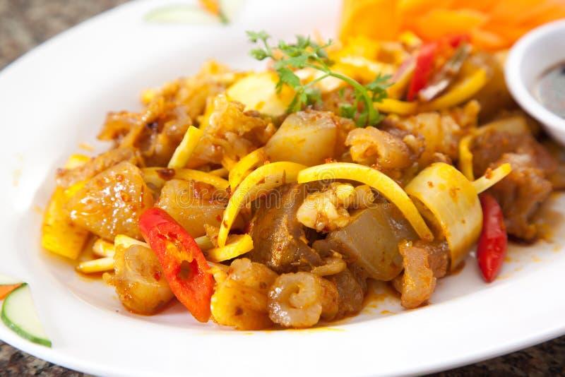 Tendine di manzo sauteed fritto con la cipolla ed il peperoncino rosso sul piatto bianco immagini stock libere da diritti