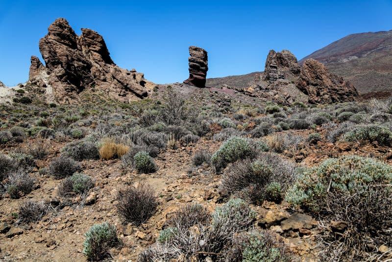 Teneife的,西班牙泰德峰国家公园 库存照片