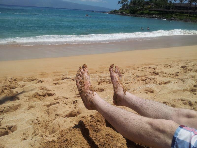 Tenen in het Zand stock foto's