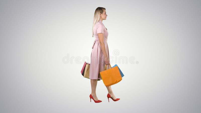 Tenencia bonita feliz de la muchacha que camina con los bolsos de compras en fondo de la pendiente stock de ilustración