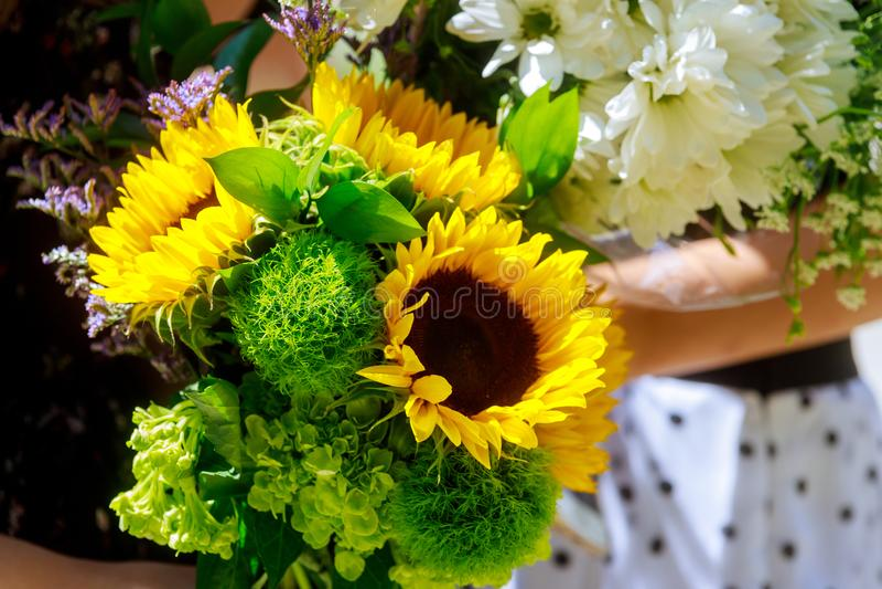 Tenencia femenina del florista de la floristería de los girasoles del ramo Foco selectivo imagen de archivo libre de regalías