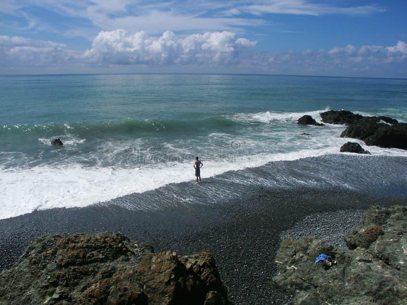 Tenendo conto di una nuotata nell'oceano fotografie stock libere da diritti
