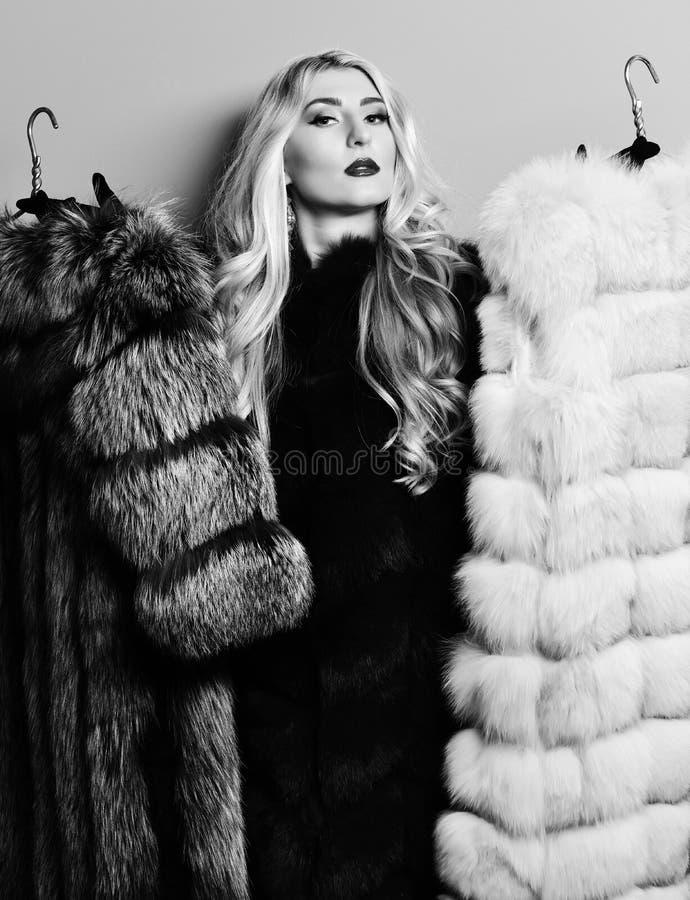 Tenendo e mostrando l'altri grigio e beige sul fondo blu dello studio, donna sexy alla moda in pelliccia immagini stock