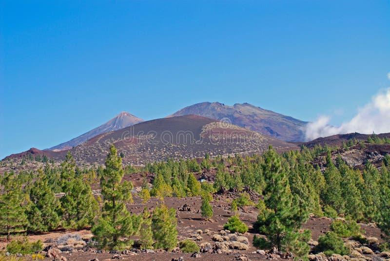 Tenerife imagem de stock royalty free