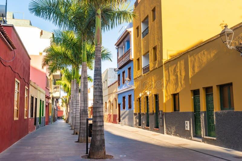 tenerife Colourful drzewka palmowe na ulicie w Puerto De La Cruz miasteczku i domy obrazy royalty free