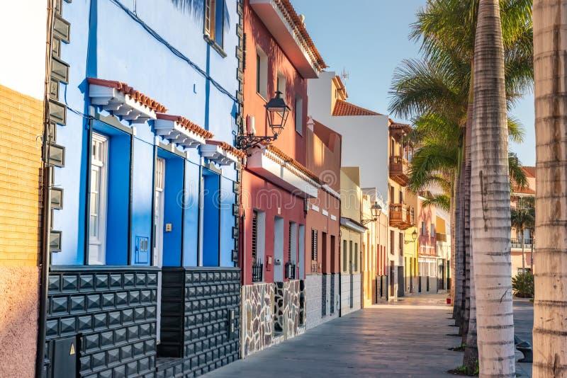 tenerife Colourful drzewka palmowe na ulicie w Puerto De La Cruz miasteczku i domy obrazy stock