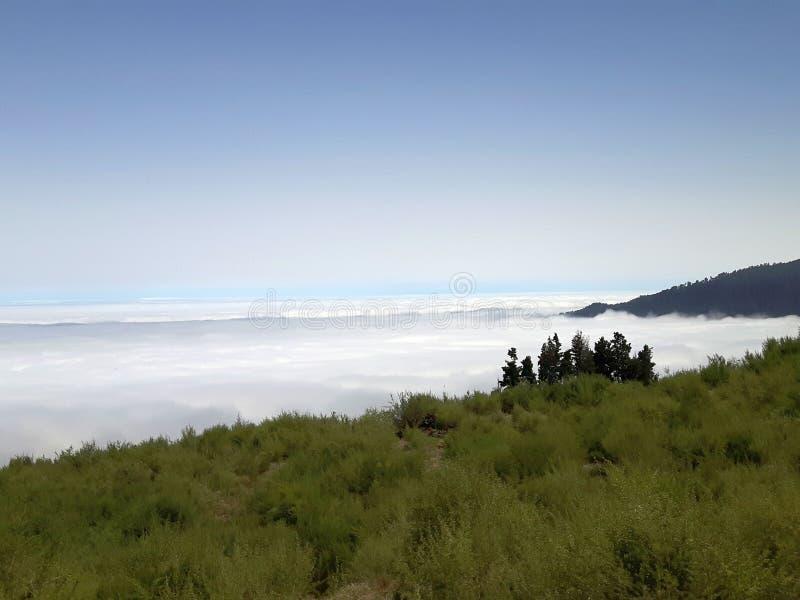 Tenerife dichtbij Gr Teide stock fotografie