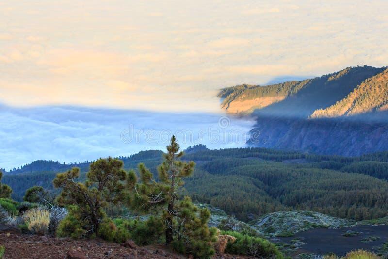 Download Tenerife, Isole Canarie, Spagna Fotografia Stock - Immagine di paesaggio, felice: 56883712