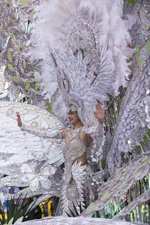 TENERIFE, O 9 DE FEVEREIRO: Caráteres e grupos no carnaval fotos de stock royalty free