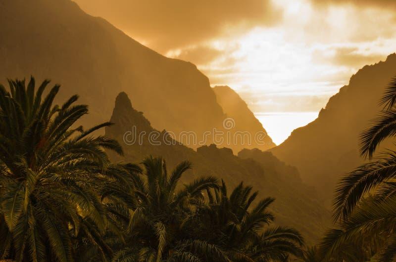 Tenerife op zonsondergang stock afbeeldingen