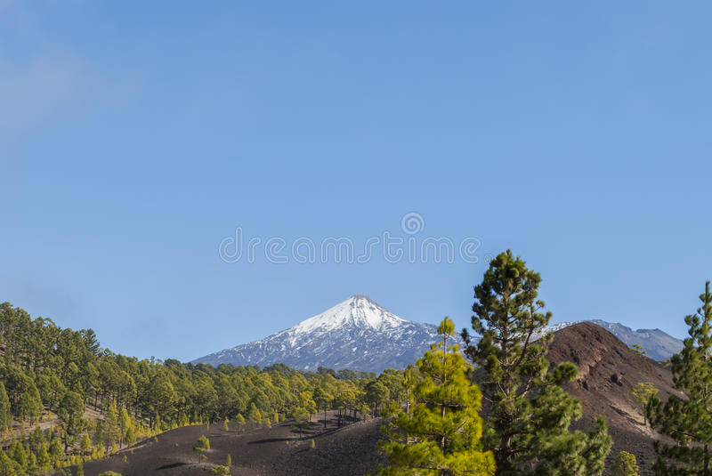 Tenerife, Teide. Tenerife. Morning light on Mount Teide - Tenerife, Canary Islands, Spain stock photos