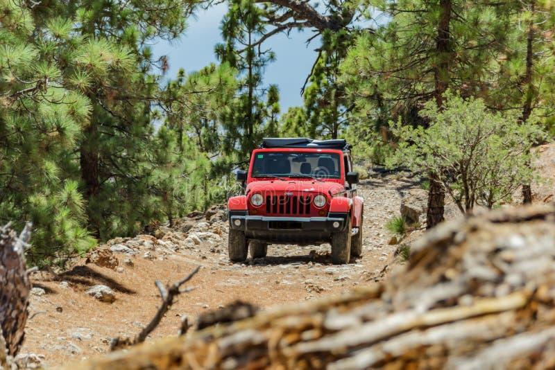 Teneriffa, Spanien - 2. September 2016: Jeep auf einem schmalen felsiger Gebirgswaldweg blockiert durch eine gefallene alte trock stockbilder