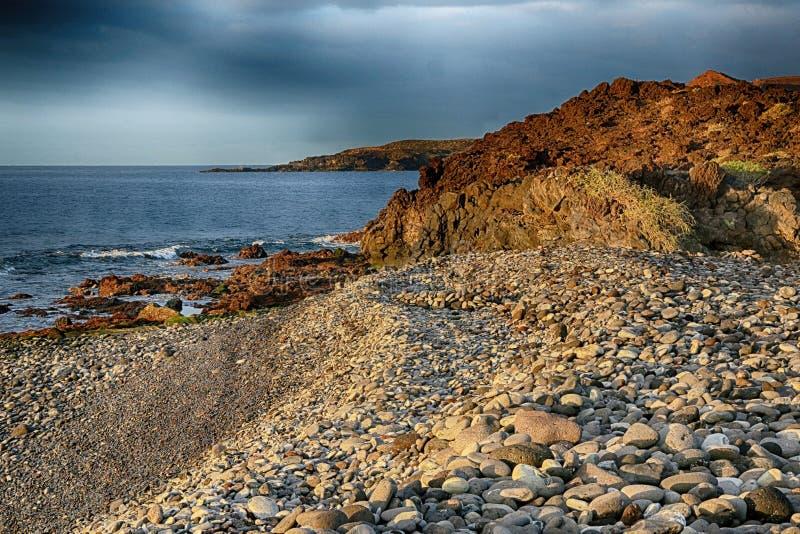 Teneriffa, Szene um Playa Colmenares, Kakteen und Landschaft lizenzfreie stockfotografie