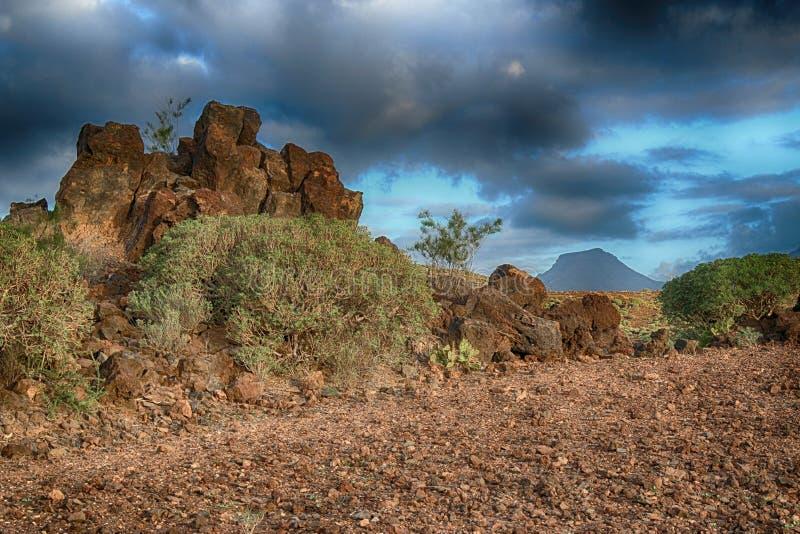 Teneriffa, Szene um Playa Colmenares, Kakteen und Landschaft lizenzfreies stockfoto