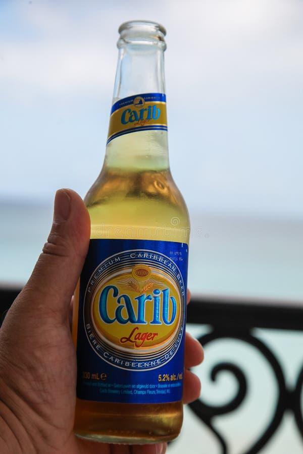 Tenir la bouteille avec l'ours des Caraïbe photographie stock libre de droits