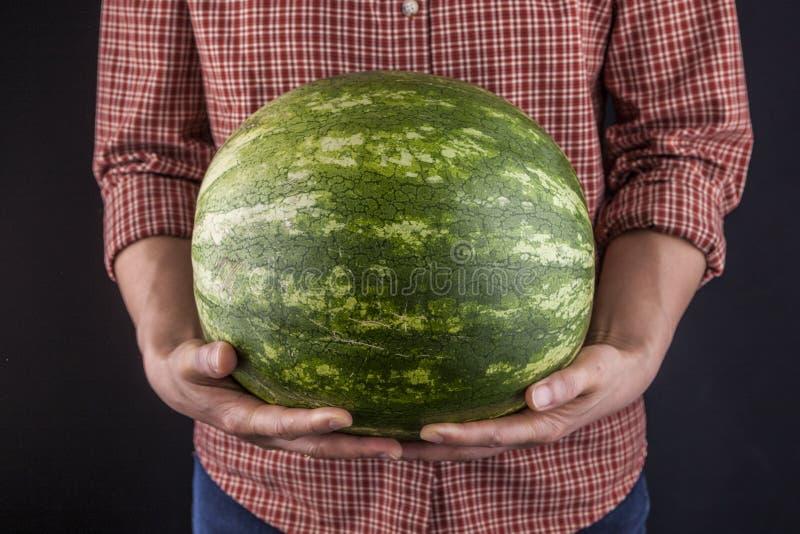 Tenir une grande pastèque verte image stock
