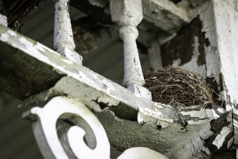 Tennants inattesi in casa abbandonata immagini stock