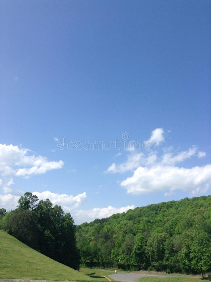 Tennesse Forest stock photo