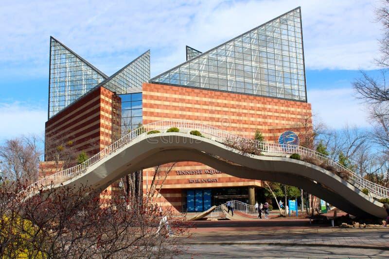 Tennessee Aquarium fotos de archivo