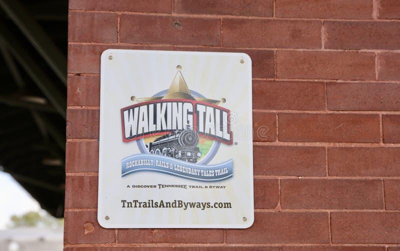 Tennessee Chodzi Wysokich ślada zdjęcie royalty free
