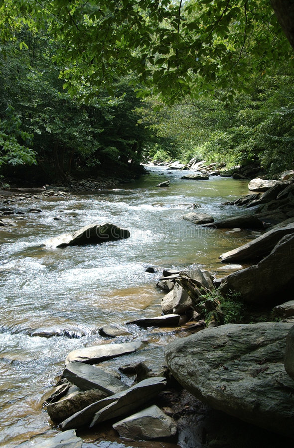 Download Tennessee Creek stock image. Image of woods, forest, america - 579747