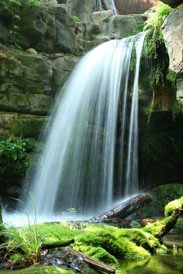 Tennessee górski strumień zdjęcie royalty free