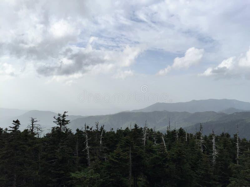Tennessee Great Smokies Mountains Landscape fotografia stock