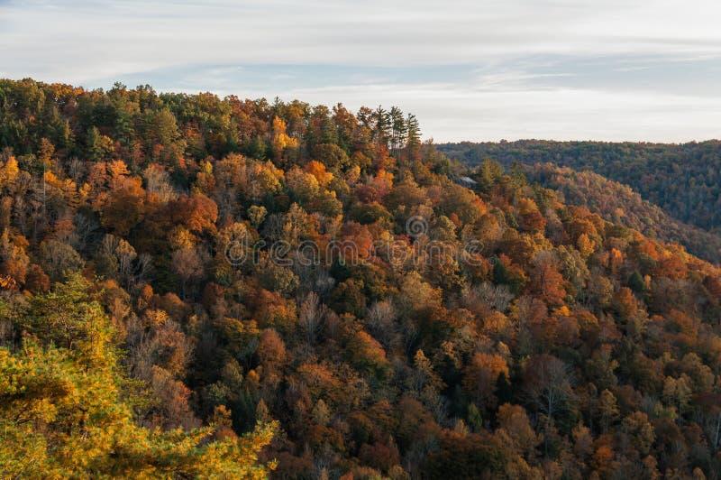 Tennessee Nov jesieni wczesna góra zdjęcia stock