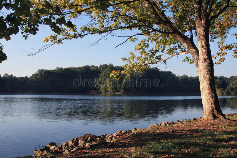 Download Tennessee River stock image. Image of wilderness, area - 6631287