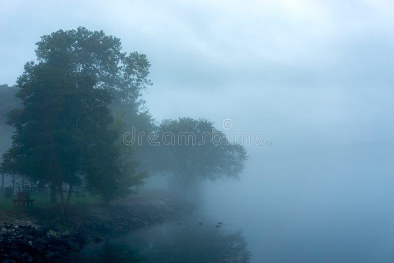Tennessee River auf nebeligem Morgen stockbilder